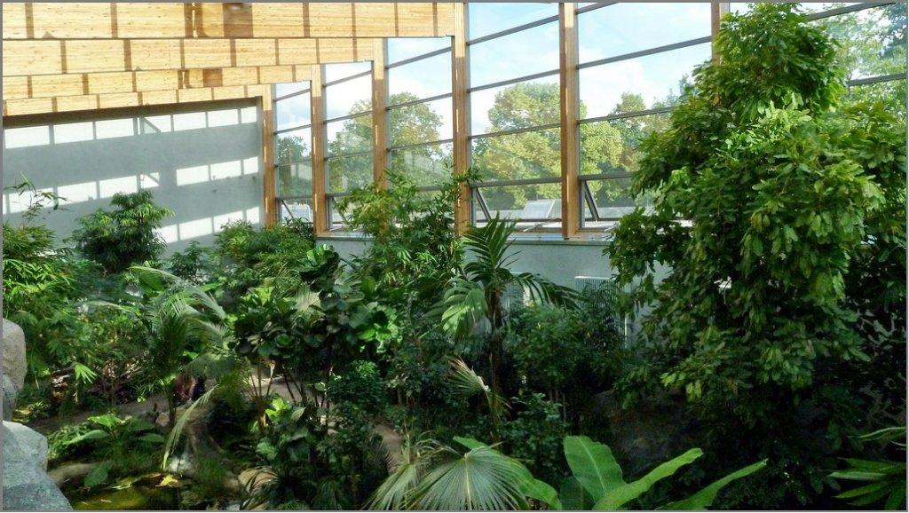 neuer ffnung des gro en vogelhauses im zoologischen garten berlin 47 kombinierte innen und. Black Bedroom Furniture Sets. Home Design Ideas